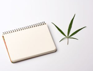 Blank Open Notebook And a Hemp Leaf On A White background Arbor Vita8